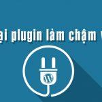 nhung-loai-plugin-lam-cham-website